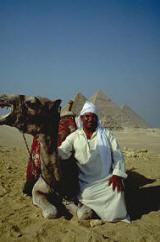 Uomo con camello