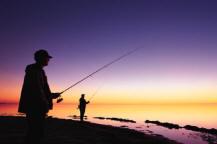 Andate dove il pesce abbocca